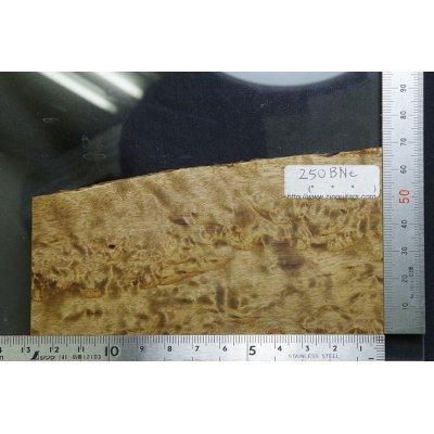 画像1: 250 BNt 2.3 カバノキ